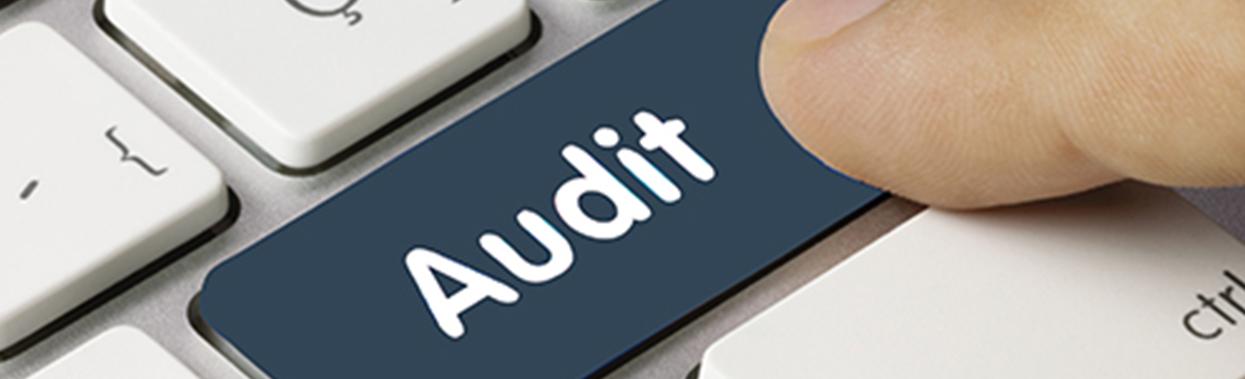 blau-audit-schmal